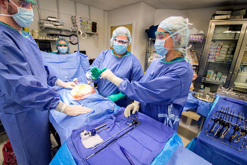 Surgical technology students practice performing surgery together